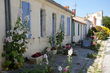 Les maisons typique de l'ile d'Aix