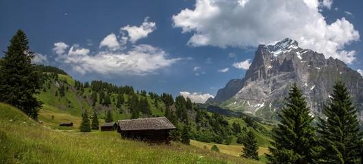 Swiss beauty, Grindelwald, meadows under Wetterhorn mount