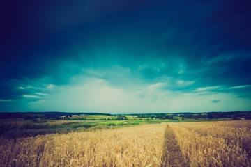 Vintage photo of storm clouds over wheat field