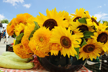 Sunflowers for sale at the farmers market