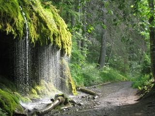 Wasserfall in der Wutachschlucht im Schwarzwald