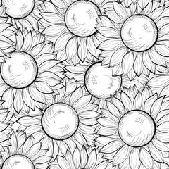 beautiful black and white seamless background with sunflowers. Hand-drawn contour lines and strokes