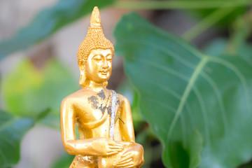 Image of buddha - soft focus