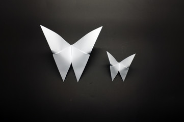 White origami butterfly paper