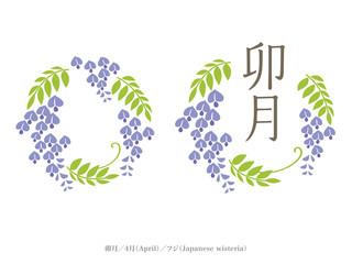 和風月名と誕生月花/卯月、4月、藤