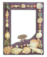picture frame with seashell isolated on white
