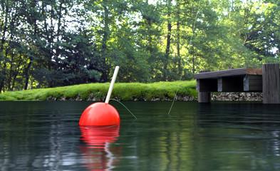 Fishing Scene / Summer Background
