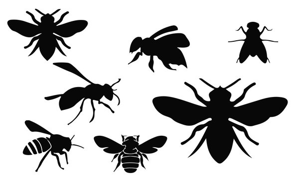 Bee Silhouette, set vector Animals Icons