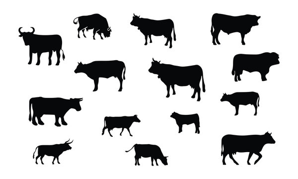 Bull and Cow Silhouette, set vector Animals Icons