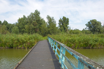 Wooden footbridge over a canal in summer