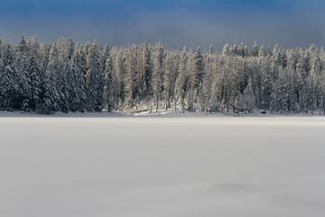 Winter am Oderteich im Harz