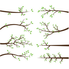 Branch Silhouettes Elements