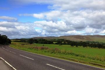 Lungo la strada, nel parco nazionale Carringorms, in Scozia