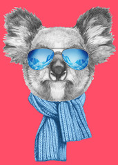 Portrait of Koala with scarf and sunglasses. Hand drawn illustration.