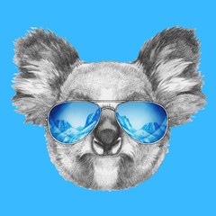 Portrait of Koala with mirror sunglasses. Hand drawn illustration.