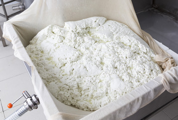 Cheese production buffalo gauze lint