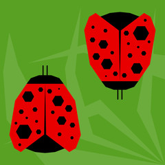 funny cartoon ladybird isolated on green background