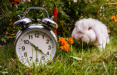 Zeit aufzustehen!
