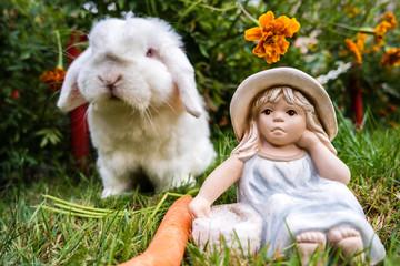 Hasi und Alice