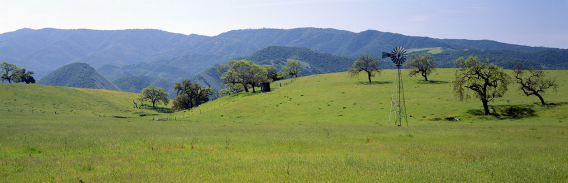 Windmill and oak trees in spring along Route 154, Santa Ynez, California