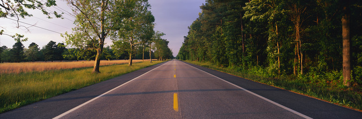 Fototapete - This is a tree lined road at sunset. It is located on the Eastern Shore of Maryland. The road travels through the center of the trees.