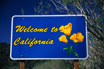 This is a road sign that says, Welcome to California. It has the state flower on it, the poppy. The sign is against a blue sky.