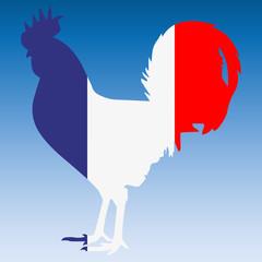 Silhouette d'un coq aux couleurs de la France.