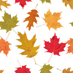 Colorful Tileable Autumn Leaves Illustration