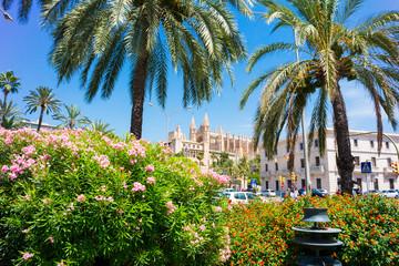 Palma de Mallorca, port marina Majorca Cathedral