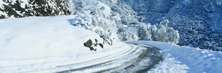 Road in winter, California