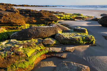 Wall Mural - Beach Rocks at Daybreak