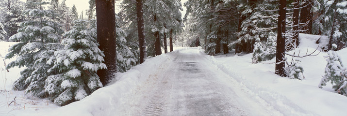 Winter Road Near Lake Tahoe, California