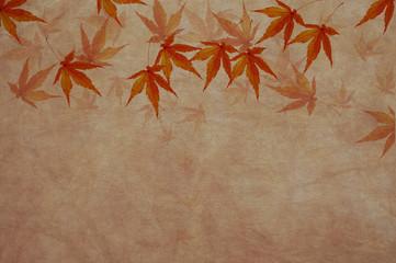 秋 もみじの背景素材