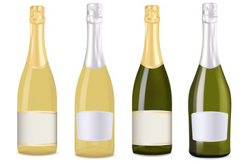 Champagne. Set of different bottles
