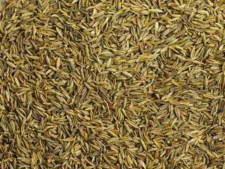 Cumin seeds.