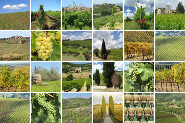 green vineyards collage