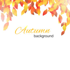 Autumnal background with leaf decoration