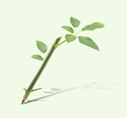 Wooden pencil with trunk tree and leaves on green background
