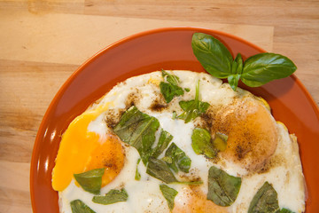 Fried eggs with basil