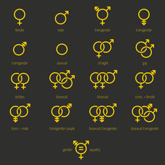 Set of Sexual Equality and Gender Outline Icons