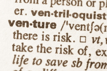 Dictionary definition of word venture