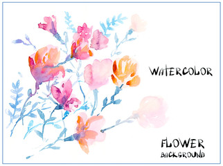 watercolors colorful flowers