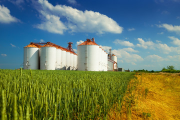 Agricultural silos under blue sky, in the fields
