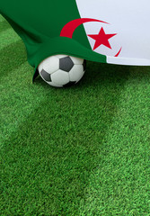 Soccer ball and national flag of Algeria,  green grass