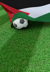 Soccer ball and national flag of Jordan,  green grass