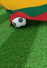 Soccer ball and national flag of Lithuania,  green grass