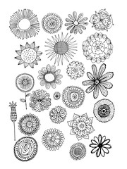 Flowers collection, sketch for your design