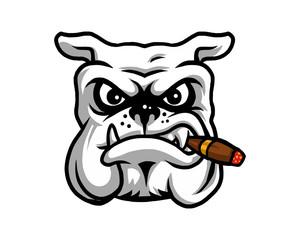 smokers dog bulldog