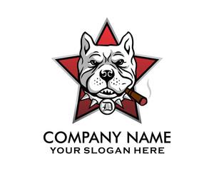 smokers dog star pitbull