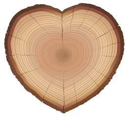 Heart shaped wood slice with annual rings, as a symbol for loving nature, trees, conservation or environment protection. Isolated vector illustration on white background.